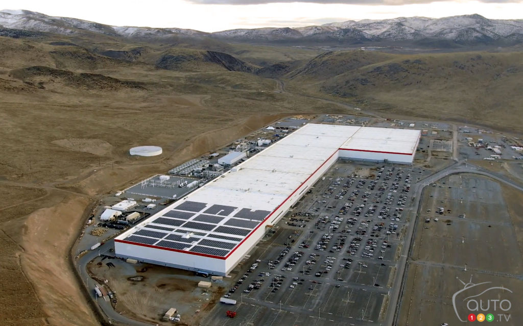 Tesla's Berlin 'Gigafactory' halted by forest protection