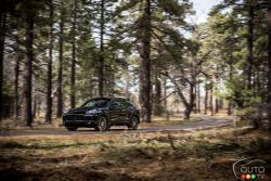 Dynamic performance, five doors, variability, comfort. The Porsche Cayenne continues on its path of success.