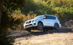 Nissan Armada and Infiniti QX80: Half-Brothers, Similarly Priced