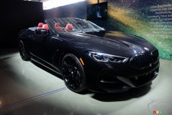 Introducing the 2019 BMW 8 Series Convertible