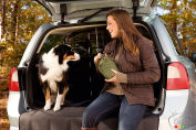 Top 10 safest vehicles for pets according to Edmunds.com