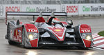 ALMS: Audi concentre son programme sur l'Europe