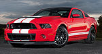 La Shelby et son V8