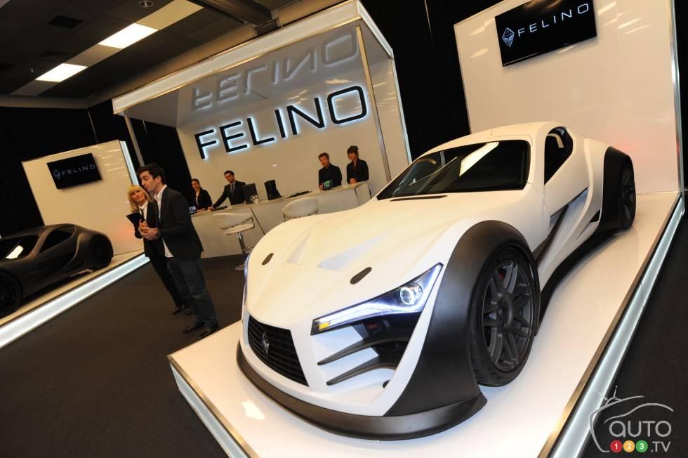 Felino Cb7 Interior