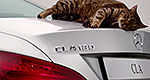 Mercedes-Benz A-Class aerodynamics tested by... cats? (video)