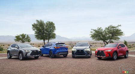 The four versions of the 2022 Lexus NX