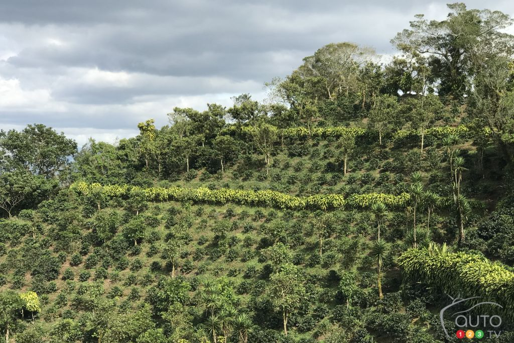 Une colline costaricaine