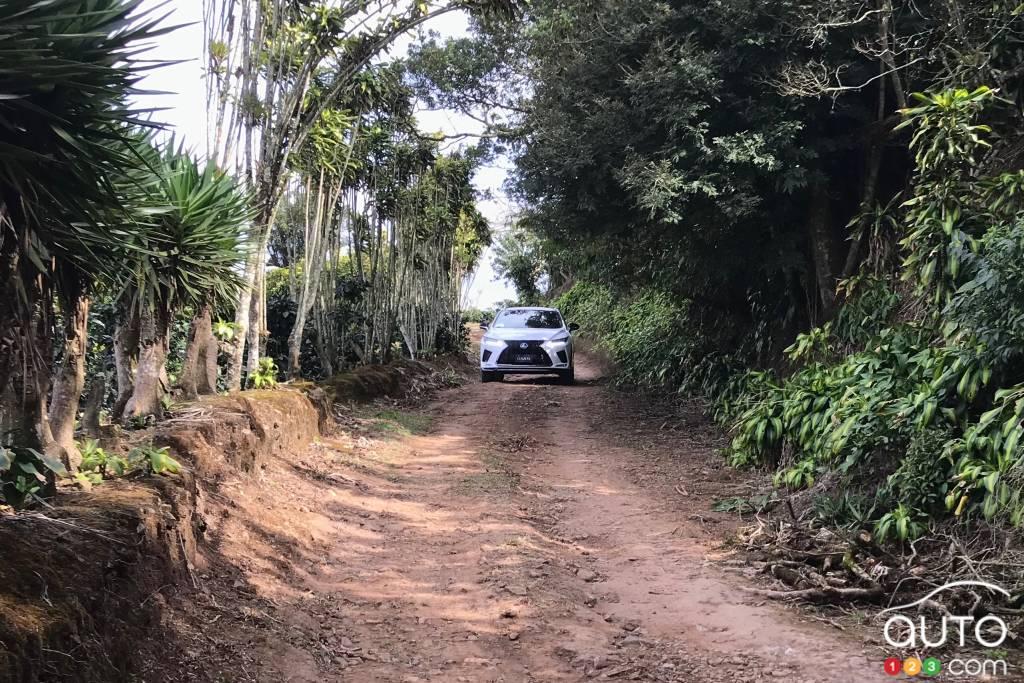 Le Lexus RX 450h 2020, sur une route de campagne