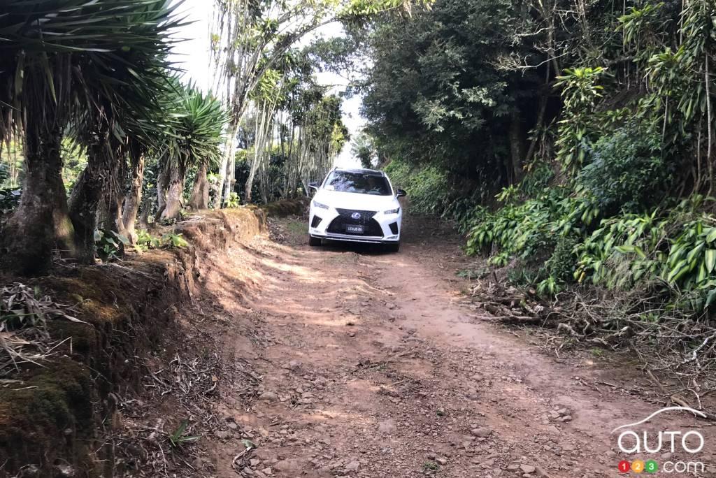 Le Lexus RX 450h 2020, sur une petite route costaricaine