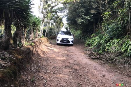 The 2020 Lexus RX 450h, on a small country road