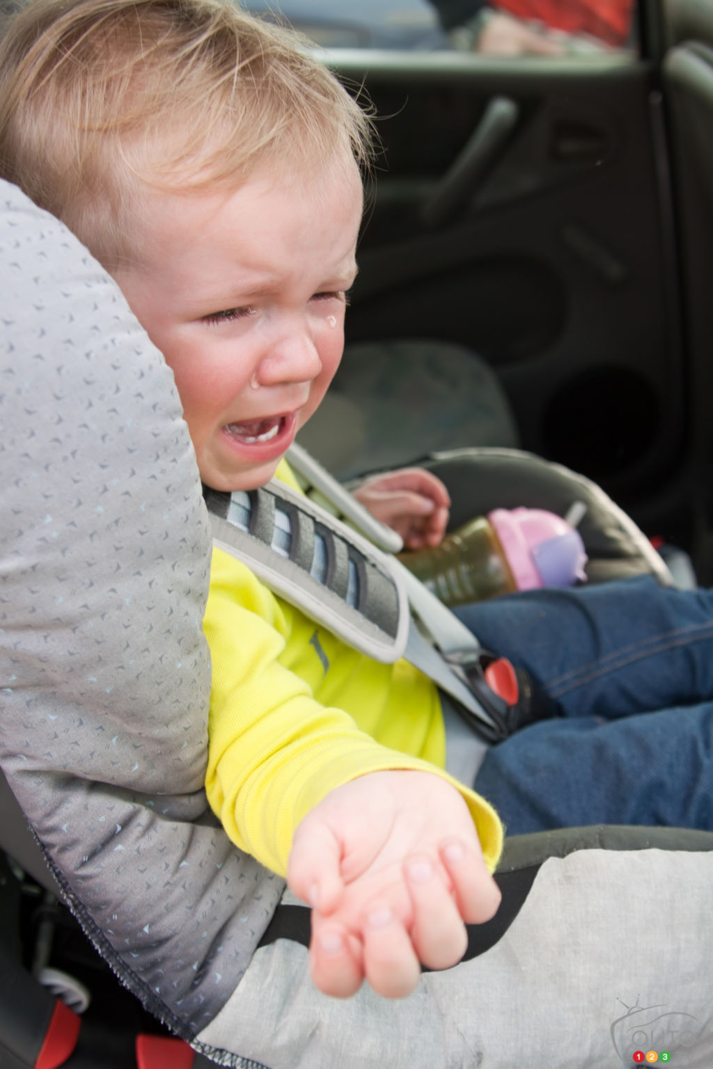 Kids and pets left in the car: When heat kills