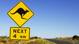 Watch this motorcyclist barely avoid a kangaroo
