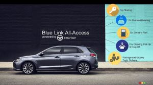 Los Angeles 2017: Hyundai's Blue Link All-Access will change your life