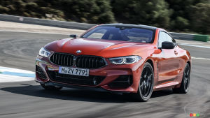 2019 BMW 8 Series Coupe: New Photo Gallery