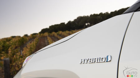 2019 Hybrid and Electric Car Guide: The Hybrids