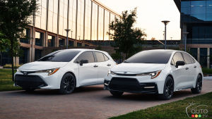 Toyota Corolla Gets Nightshade Treatment for 2020